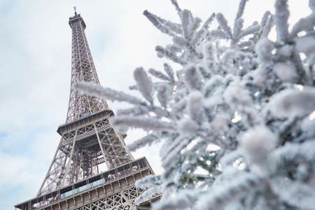 Christmas tree covered with snow near the Eiffel tower in Paris, France Stok Fotoğraf