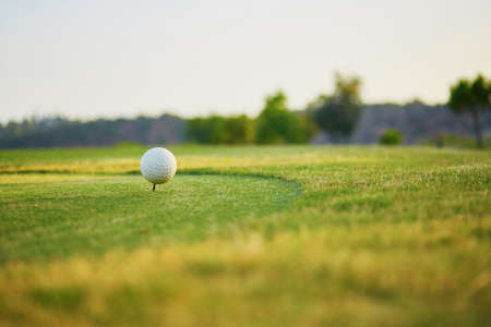 caddie: Closeup of golf ball on the green Stock Photo