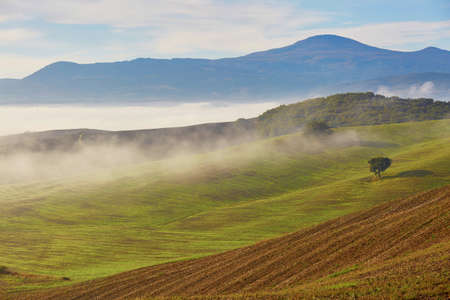 Scenic view of Tuscan fields and hills with fog at early morning. Val dOrcia, Tuscany, Italy
