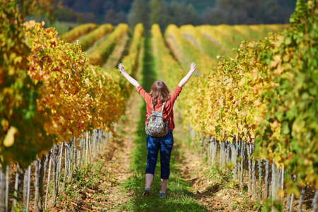 Woman tourist walking in Tuscan vineyards in Val dOrcia, Tuscany, Italy