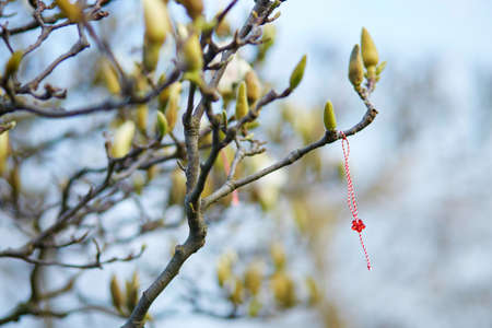 Martisor, symbol of the beginning of spring