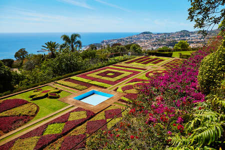 Famous botanical garden in Funchal, Madeira island, Portugal