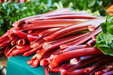 Large heap of fresh ripe organic rhubarb on farmer market in Paris, France 스톡 콘텐츠