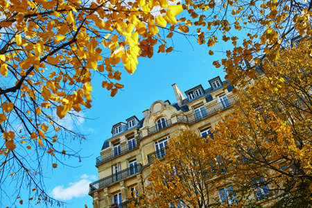 View of Parisian building and golden autumn leaves over the blue sky on a sunny fall day