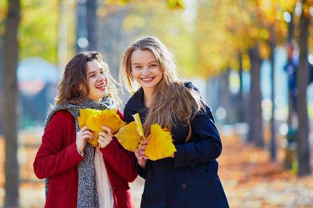 晴れた秋の日に秋の公園に歩いて2人の若い女の子。フレンドシップコンセプト