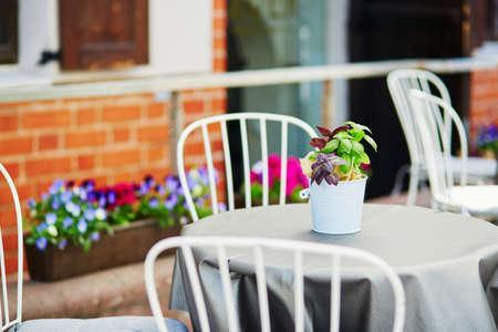 夏の日の花で飾られたリトアニア、ヴィリニュスの屋外カフェのテーブル 写真素材