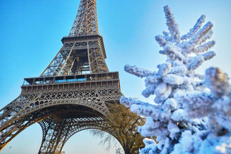 Christmas tree covered with snow near the Eiffel tower in Paris, France Imagens