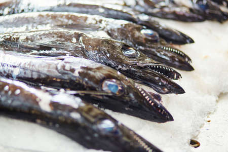 Atlantic largehead hairtails (also called espada in Portuguese) on traditional fish market Mercado dos Lavradores in Funchal, Madeira island, Portuga Stock Photo