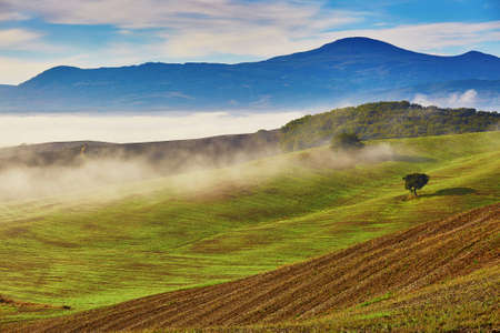 Scenic Tuscan landscape with beautiful fields, meadows and hills with morning fogs. San Quirico d'Orcia, Tuscany, Italy 写真素材