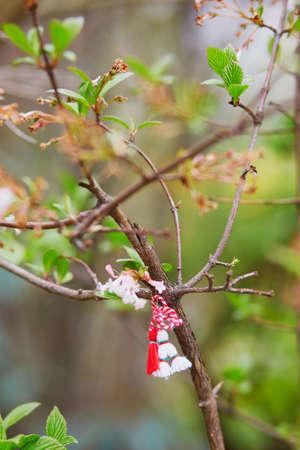 Ramo di ciliegio in fiore con martisor rosso e bianco - simbolo tradizionale del primo giorno di primavera