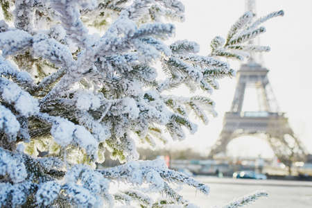 Christmas tree covered with snow near the Eiffel tower in Paris, France Stock Photo