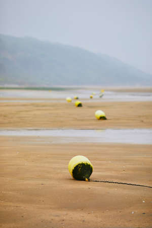 Buoys on beach of Villers-sur-Mer in Lower Normandy, France on a foggy day at low tide Banque d'images - 110300785