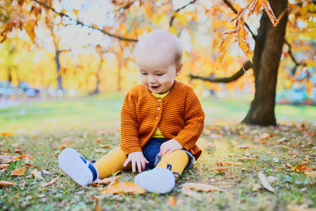 Cute little baby girl having fun on beautiful fall day. Child playing in park at very first autumn. Kid gathering yellow fall foliage. Outdoor autumn activities for children