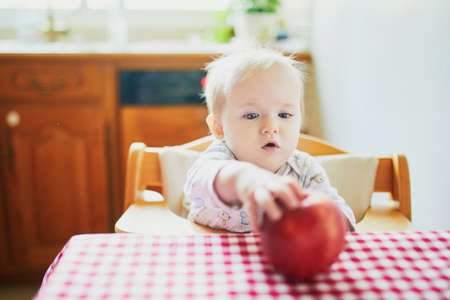 Cute baby girl eating apple in the kitchen. Little kid tasting solids at home. Baby led weaning