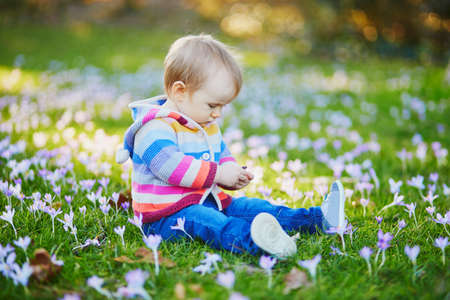 Baby girl in knitted clothes sitting on the grass with blue hyacinths. Little child outdoors on a spring day. Toddler having fun with flowers Stockfoto