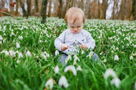 Carina bambina di un anno seduta sull'erba con molti fiori di bucaneve nel parco o nella foresta in una giornata primaverile. Ragazzino che esplora la natura. Attività all'aperto per bambini Archivio Fotografico