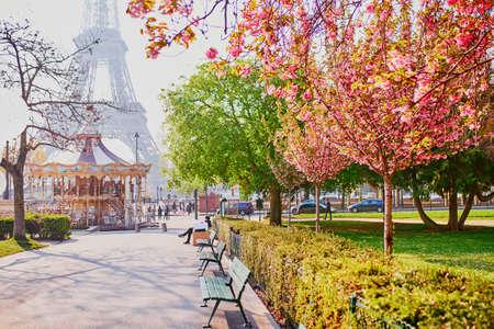 Schilderachtig uitzicht op de Eiffeltoren met kersenbloesembomen in Parijs, Frankrijk op een lentedag Stockfoto