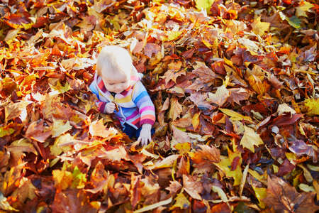 Adorable little girl sitting in large heap of colorful autumn leaves on a fall day in park 스톡 콘텐츠