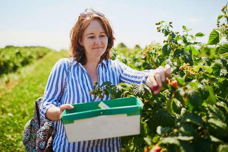Beautiful young girl picking fresh ripe organic raspberries on farm
