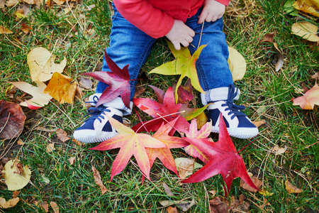 Little girl sitting on the grass and playing with colorful autumn leaves on a fall day in park, closeup of legs