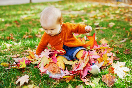 Adorable little girl sitting on the grass and playing with colorful autumn leaves on a fall day in park 스톡 콘텐츠