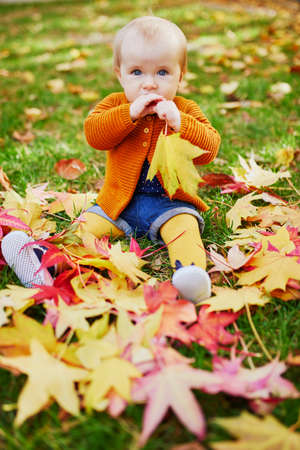 Entzückendes kleines Mädchen, das auf dem Gras sitzt und an einem Herbsttag im Park mit bunten Herbstblättern spielt
