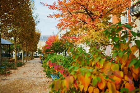 Nice and bright autumn day in Paris, France