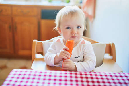 Cute baby girl eating carrot in the kitchen. Little kid tasting solids at home. Baby led weaning concept