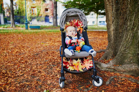 Adorable baby girl sitting in stroller with bunch of red maple leaves on sunny fall day in park. Autumn activities with kids Reklamní fotografie