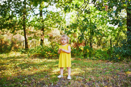 Adorable toddler girl in yellow dress having fun in park or forest and picking flowers on a summer day. Little kid exploring nature. Outdoor activities for kids