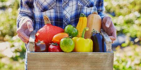 Femme tenant une caisse avec des légumes mûrs à la ferme. Concept d'automne, de récolte et de jardinage