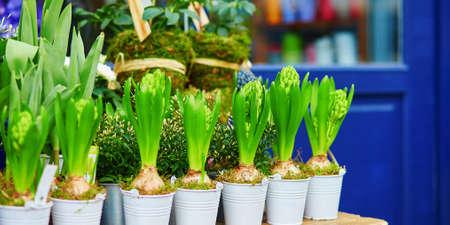 Outdoor flower shop in Paris, France Reklamní fotografie
