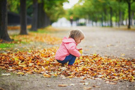 Adorable cheerful toddler girl gathering yellow autumn leaves in park in Paris, France. Happy child enjoying warm and sunny fall day. Outdoor autumn activities for kids Standard-Bild - 132470405