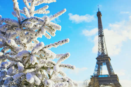 Christmas tree covered with snow near the Eiffel tower in Paris. Celebrating seasonal holidays in France