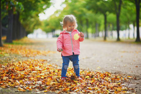 Adorable cheerful toddler girl gathering yellow autumn leaves in park in Paris, France. Happy child enjoying warm and sunny fall day. Outdoor autumn activities for kids Standard-Bild - 132470649
