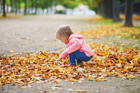 Adorable cheerful toddler girl gathering yellow autumn leaves in park in Paris, France. Happy child enjoying warm and sunny fall day. Outdoor autumn activities for kids Standard-Bild - 132470720