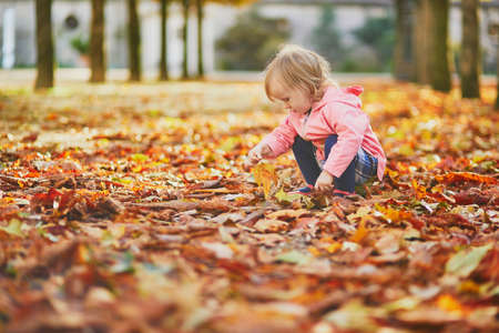 Adorable toddler girl picking fallen leaves in Tuileries garden in Paris, France. Happy child enjoying warm and sunny fall day. Outdoor autumn activities for kids Standard-Bild - 132470880