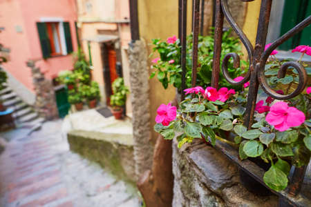 Picturesque street in Riomaggiore, one of five famous villages of Cinque Terre in Liguria, Italy