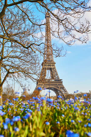 Scenic view of the Eiffel tower through blue flowers on a spring day in Paris, France