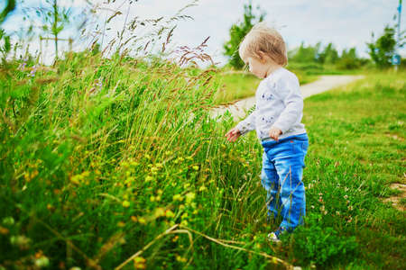 Adorable baby girl walking on green field. Little child having fun outdoors. Kid exploring nature