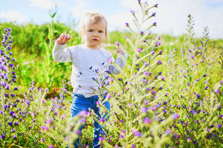 Adorable baby girl walking on green field with flowers. Little child having fun outdoors. Kid exploring nature