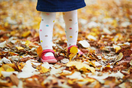 Toddler girl in red shoes and polka dot pantihose standing on fallen leaves in a fall day. Child enjoying autumn day in park. Stylish and beautiful clothes and shoes for kids