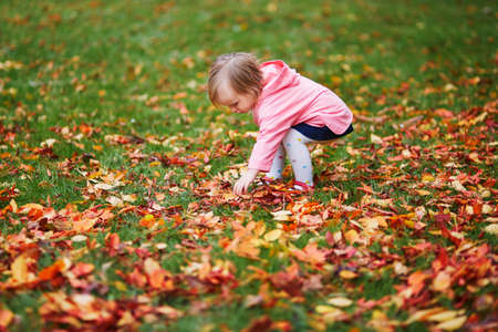 Adorable cheerful toddler girl gathering autumn leaves in Tuileries garden in Paris, France. Happy child enjoying warm and sunny fall day. Outdoor autumn activities for kids