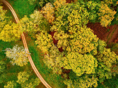 Scenic aerial view of autumn forest in northern France, Yvelines, France