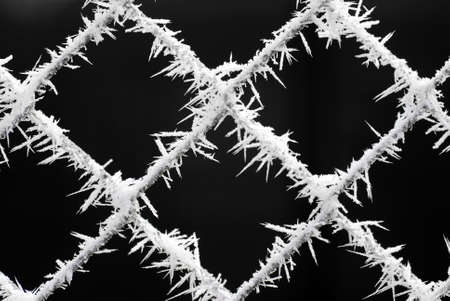hoar frost: Macro with a very shallow depth of field of delicate hoar frost growing on grey cyclone fencing against a dark background. Stock Photo