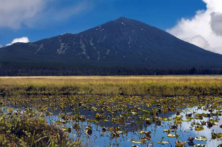 The backside of Mt. Bachelor reflected in lily pond against an Autumn meadow and a cloudy blue sky. Stock Photo