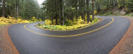A curve in the road on the McKenzie Highway in Oregon on a foggy Autumn morning.  6 image stitch Imagens