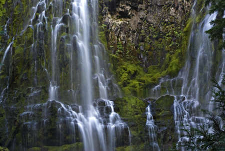 proxy falls: Proxy Falls waterfall in Oregon.