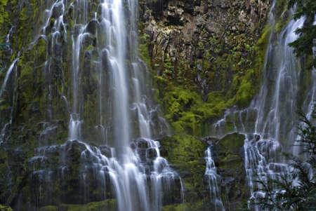 proxy falls: Proxy Falls waterfall in Oregon.