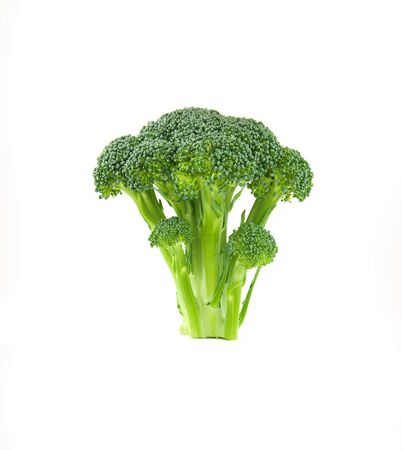 brocolli: A floret of brocolli isolated against a white background